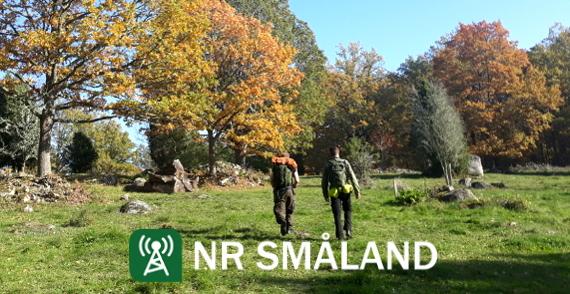 NR Småland #59: Jonas kuppar NR Småland